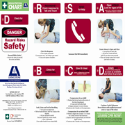 Picture for category First Aid Publications